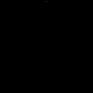 Symbol_Schwarz